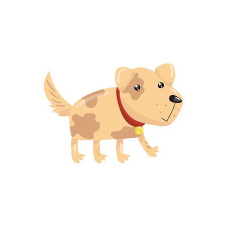Little dog with spotted body and shiny eyes. Puppy character with red collar. Pet with funny muzzle. Cute domestic animal. Cartoon flat vector design