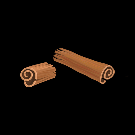Cinnamon, fragrant spice vector illustration on a black background.