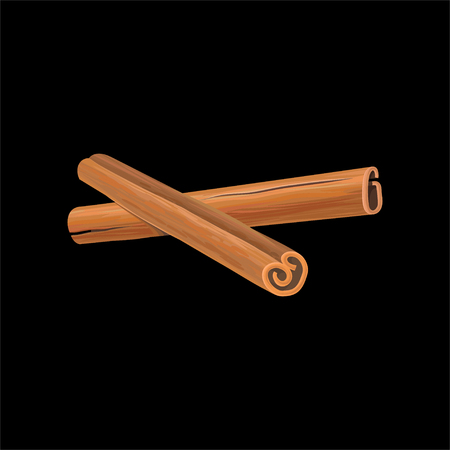Two cinnamon sticks, fragrant spice vector Illustration isolated on a white background. Illustration
