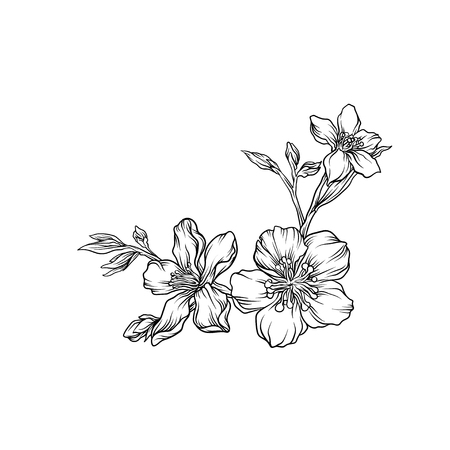 Hand drawn flower branch, monochrome floral design element vector illustration.