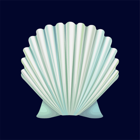Scallop seashell, an empty shell of a sea mollusk vector Illustration isolated on a dark blue background.