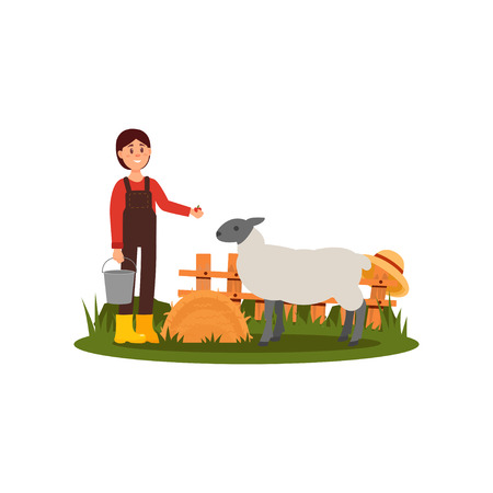 Cute young girl feeding sheep on farmyard. Farmer woman in shirt, overall and rubber boots. Wooden fence on background. Flat vector design