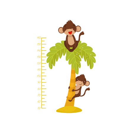 Height chart for children and funny monkeys on palm tree. Tropical animals. Measuring wall sticker for kids room. Flat vector design Illustration