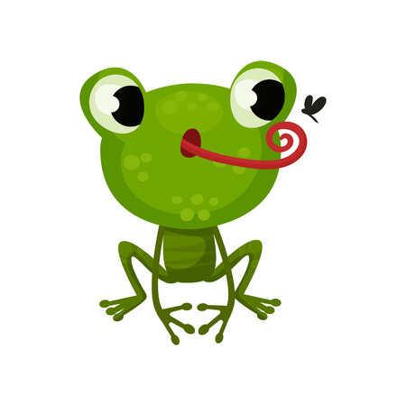 Cute frog hunting on mosquito. Flat vector icon of funny green toad. Cartoon character of amphibian animal Stock Illustratie