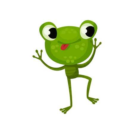 Happy dancing frog with tongue out. Green reptile with shiny eyes, big head and long legs. Flat vector design for children book