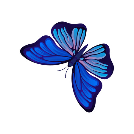 Illustration of bright butterfly. Flying insect with two pairs of wings with beautiful pattern. Graphic design for wall decor, textile or postcard. Colorful vector icon isolated on white background. Illusztráció