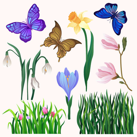 Set of bright-colored blooming flowers and butterflies. Long green grass. Beautiful flying insect. Spring season. Nature and gardening theme. Hand drawn vector icons isolated on white background. Illustration