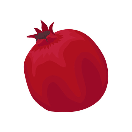 Illustration of fresh bright red pomegranate. Delicious and healthy fruit. Decorative element for print, poster, juice or yogurt packaging. Colorful flat vector design isolated on white background.