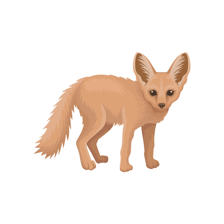 Detailed flat vector icon of cute fennec. Small pale fox with large pointed ears and fluffy tail. Wild animal of tropical African fauna Illustration