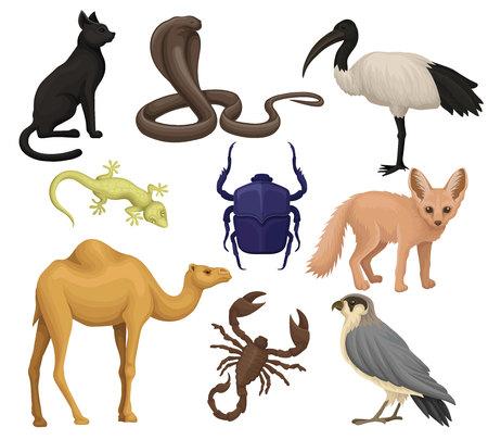 Insieme di vettore piatto dettagliato di vari animali, uccelli e insetti egiziani. Ibis, volpe fennec, scarabeo, lucertola maculata. Fauna africana
