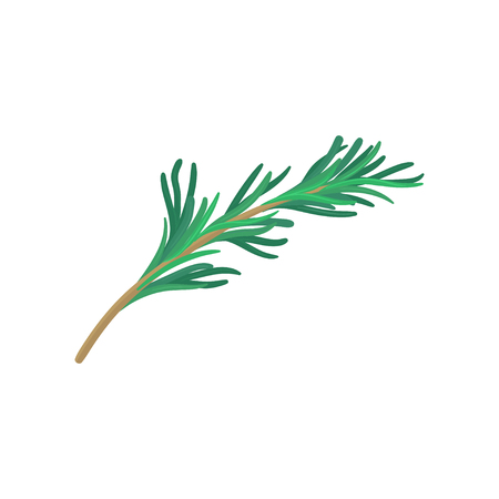 Green sprig of tarragon. Natural product. Flat vector icon of plant used in culinary. Herbs and spices theme