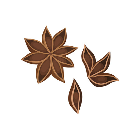 Flat vector icon of dry star anise with seeds. Used as aromatic seasoning in cooking. Ingredient for dishes and mulled wine Illustration