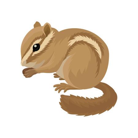 Icono de vector plano de pequeña ardilla marrón. Animal pequeño mamífero. Roedor con bolsas en las mejillas y rayas claras y oscuras que recorren el cuerpo. Ilustración de vector