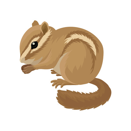 Flat vector icon of small brown chipmunk. Small mammal animal. Rodent with cheek pouches and light and dark stripes running down the body