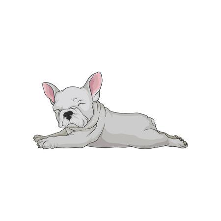 Icono de vector de dibujos animados de boston terrier en pose acostada. Cachorro soñoliento. Pequeño perro doméstico con pelaje blanco liso