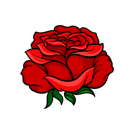 Beautiful bright red rose isolated on white background. Tattoo artwork. Nature and botany theme. Graphic design for postcard, t-shirt print or retro wedding invitation. Colorful vector illustration.