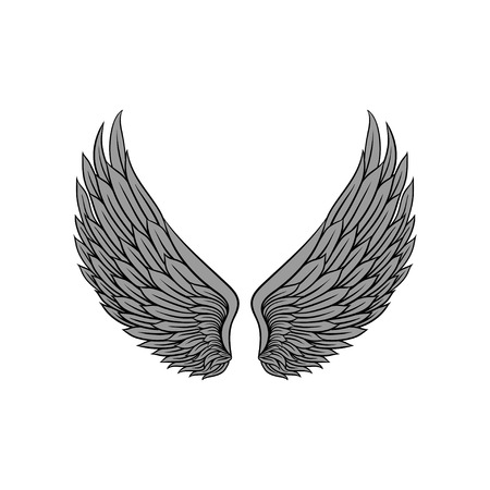 Beautiful heraldic wings with gray feathers of bird or angel. Tattoo artwork. Graphic element for vintage style poster, sticker or print. Colorful vector illustration isolated on white background. Vectores