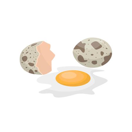 Raw quail egg vector Illustration on a white background Ilustração