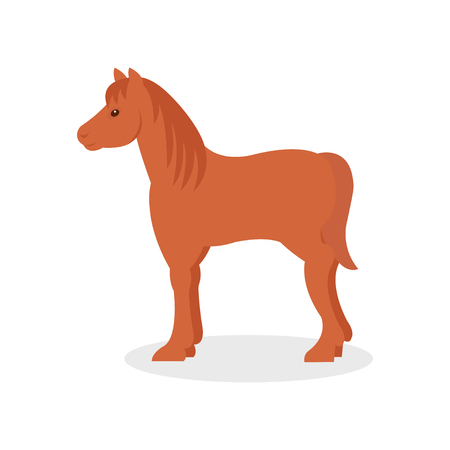 Brown horse, farm animal vector Illustration isolated on a white background. Ilustrace