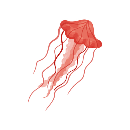 Illustration of swimming jellyfish. Bright red sea jelly. Marine creature with long thin tentacles. Element for print, sticker or mobile game. Colorful flat vector icon isolated on white background.