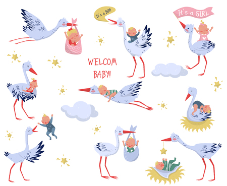 Flat vector set of white storks with babies. Lovely birds and newborn kids. Elements for children book or greeting card Stock Photo