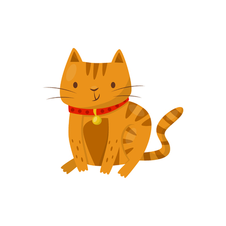 Funny cat, cute domestic pet animal cartoon character vector Illustration isolated on a white background.
