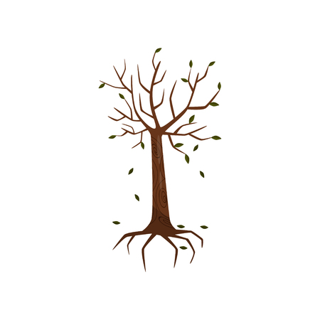 Dead tree, symblol of environmental pollution vector Illustration on a white background