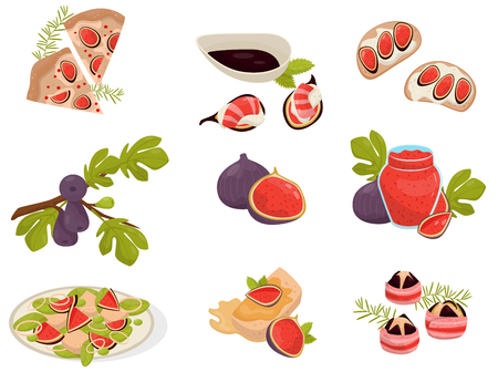 Dishes with fig fruits set, pizza, sandwich, canapé, glass of jam, capcake vector Illustrations isolated on a white background.