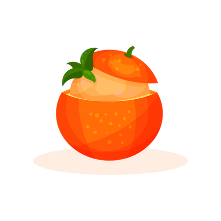 Fruit orange dessert vector Illustration isolated on a white background.