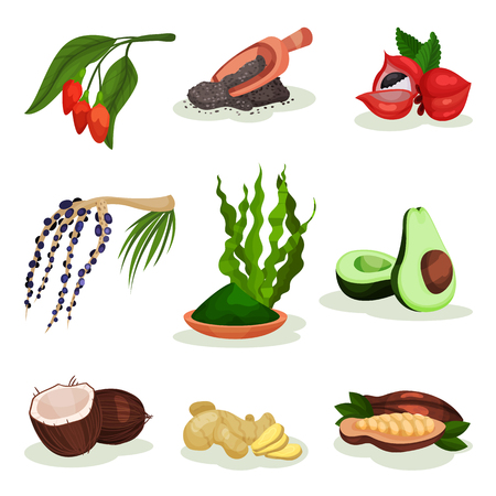 Flat vector set of superfood. Goji and acai berries, avocado, coconut, spirulina grass, chia seeds, guarana, ginger and cacao beans. Healthy food Stock Photo - 107453870