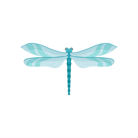 Small bright blue dragonfly with two pairs of fragile wings. Beautiful flying insect. Fauna theme. Graphic element for textile or greeting card. Colorful flat vector icon isolated on white background.