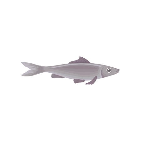 Illustration of big swimming fish, side view. Marine creature. Inhabitant of ocean. Graphic element for advertising poster or restaurant menu. Colorful flat vector design isolated on white background.