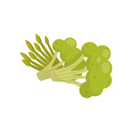 Fresh broccoli and asparagus, organic healthy food vector Illustration on a white background Stock Illustratie