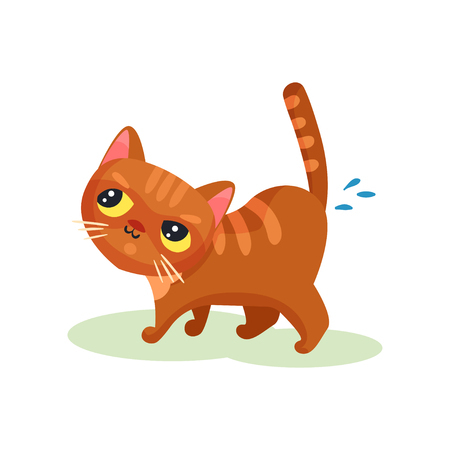 Naughty kitten peeing on the floor, mischievous cute little cat vector Illustration isolated on a white background. Vectores