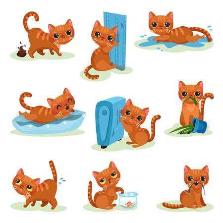 Naughty kitten in different situations, mischievous cute little cat vector Illustrations isolated on a white background.