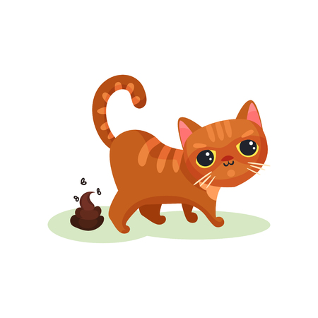 Naughty kitten pooping, mischievous cute little cat vector Illustration on a white background