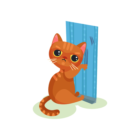 Naughty kitten scratching wallpaper, mischievous cute little cat vector Illustration on a white background