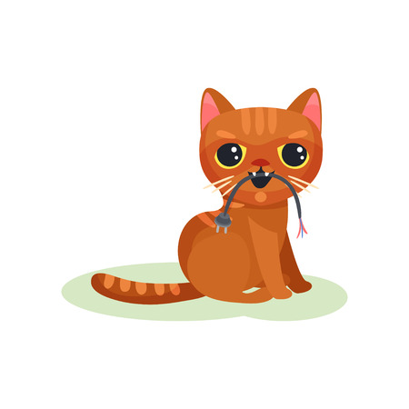 Naughty kitten gnawing wire with plug, mischievous cute little cat vector Illustration on a white background