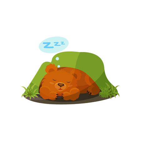 Cute bear sleeping in a den vector Illustration on a white background Ilustrace