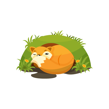 Cute fox sleeping in a den vector Illustration on a white background