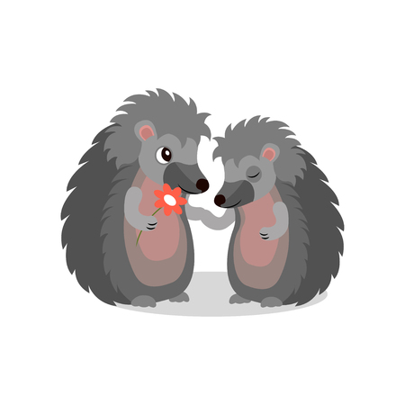 Couple of hedgehogs, hedgehog giving a flower to another, cute animals cartoon characters vector Illustration isolated on a white background.