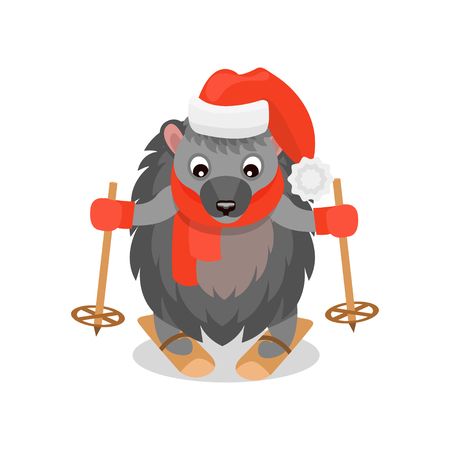 Cute hedgehog skiing, funny animal cartoon character wearing red hat and scarf vector Illustration isolated on a white background. Illustration