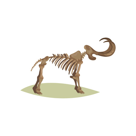 Flat vector icon of mammoth skeleton. Bones of prehistoric animal. Object of paleontology museum