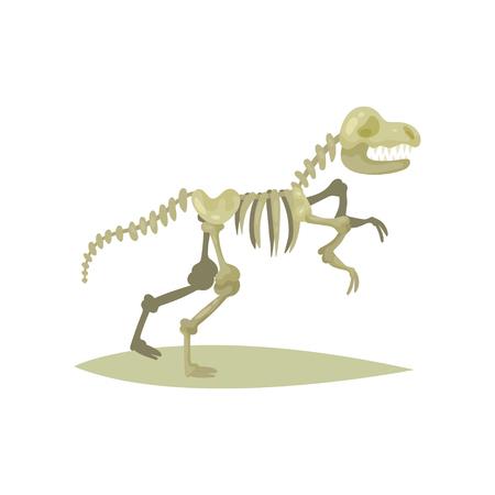 Flat vector icon of dinosaur skeleton. Tyrannosaurus Rex. Bones of prehistoric reptile. Fossil exhibit. Ancient museum object