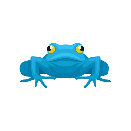 Colorful illustration of funny frog, front view. Amphibian with big yellow eyes. Cartoon style icon. Graphic element for mobile game or children book. Flat vector design isolated on white background.