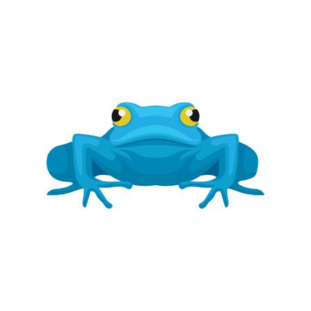Illustrazione colorata di rana divertente, vista frontale. Anfibio con grandi occhi gialli. Icona di stile del fumetto. Elemento grafico per gioco per cellulare o libro per bambini. Disegno vettoriale piatto isolato su sfondo bianco.