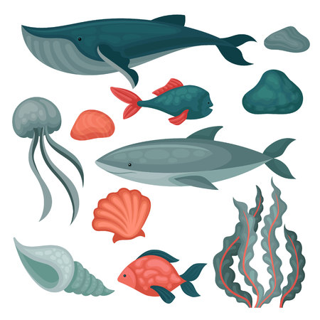 Flat vector set of sea animals and objects. Big and small fishes, jellyfish, stones, seaweed and marine shells 일러스트
