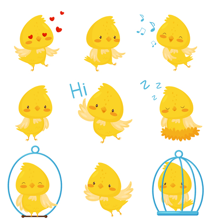 Cute chicken chracters in various situations set, emotional funny bird cartoon character vector Illustration on a white background Stock Photo
