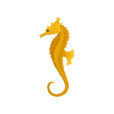 Yellow long-snouted seahorse. Marine animal. Sea and ocean life theme. Flat vector element for mobile game Illustration
