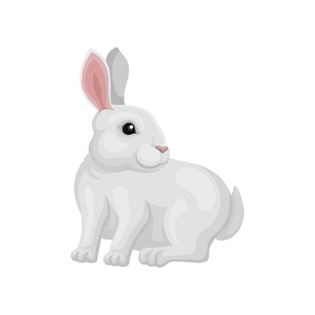 Small white rabbit sitting and looking around, side view. Animal with long ears and short tail. Cute home pet. Graphic element for postcard or banner. Flat vector design isolated on white background. Illustration